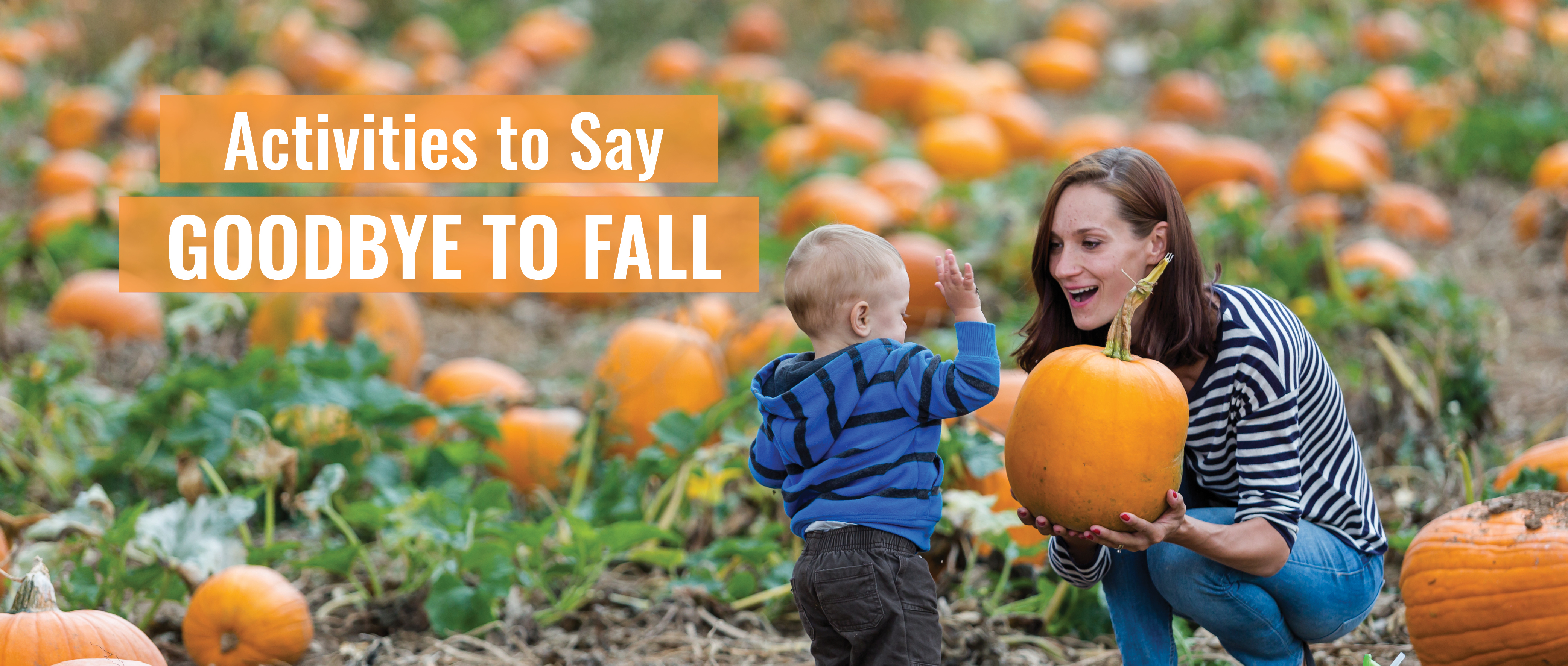 Fall activities in Long Island